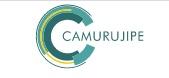 Auto Viação Camurujipe logo