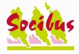 Socibus